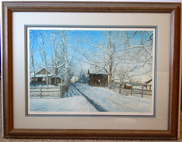 Framed Winter\'s Lace Photos